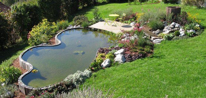 4 conseils pour bien entretenir son jardin
